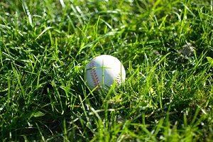 hierba jugar balon